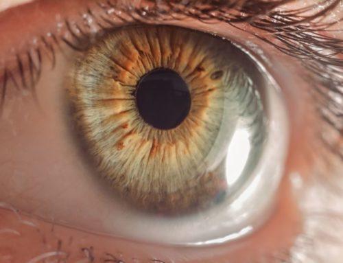 Test Rejilla de Amsler: qué es y para qué sirve